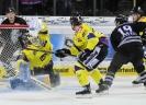 07.01.2014, TS Ice Tigers Nürnberg - Krefeld Pinguine 0:6