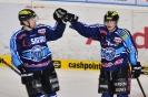 12.01.2014, ERC Ingolstadt - Schwenninger Wild Wings 11:2