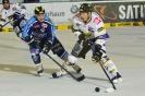 22.11.2013, ERC Ingolstadt - Krefeld Pinguine 0:3