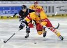 22.11.2013, TS Ice Tigers Nürnberg - Düsseldorfer EG 1:2 n.P.