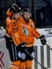 25.03.2014 - DEL Playoff Viertelfinale Spiel 5, TS Ice Tigers Nürnberg - Grizzly Adams Wolfsburg 6:2