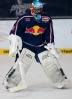 26.01.2014, EHC RedBull München - Schweninger Wild Wings 5:1