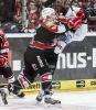 29.04.2014 - DEL PlayOff Finalspiel 7, Kölner Haie - ERC Ingolstadt 0:2