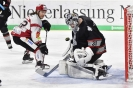 08.03.2019 - PPO2: TS Ice Tigers Nürnberg - Fischtown Pinguins Bremerhaven 3:4 n.V2