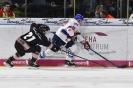 24.02.2019: TS Ice Tigers Nürnberg - Adler Mannheim 1:4