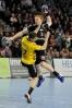 Handballsaison 2015-16