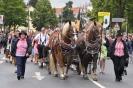 Eibacher-Kirchweih-2010005